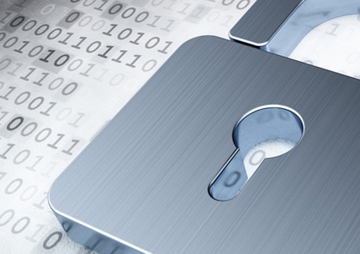 Network Security Protection Services
